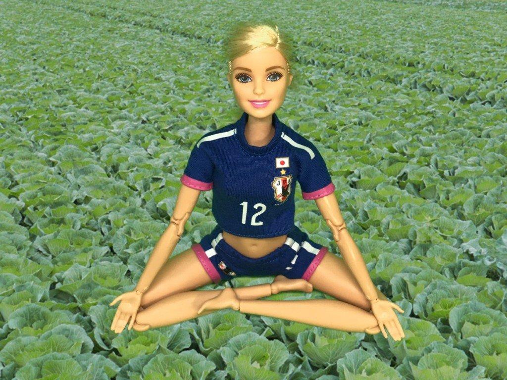 キャベツ畑で瞑想